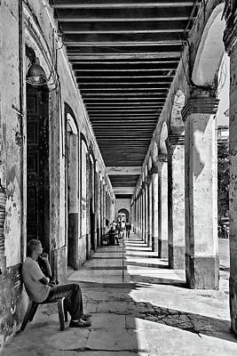 Photograph - Sitting In The Shade Bw by Dawn Currie