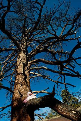Sitting In Tree 2 Art Print by Scott Sawyer