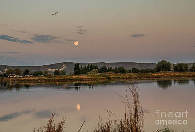 Sitting Moon Art Print by Robert Bales