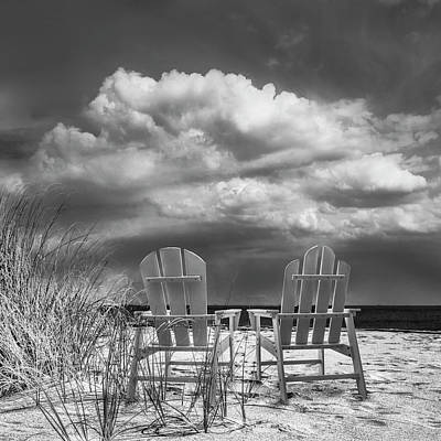 Photograph - Sitting Pretty In Black And White by Debra and Dave Vanderlaan