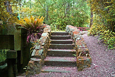 Photograph - Siuslaw Stairs by Joseph Coulombe