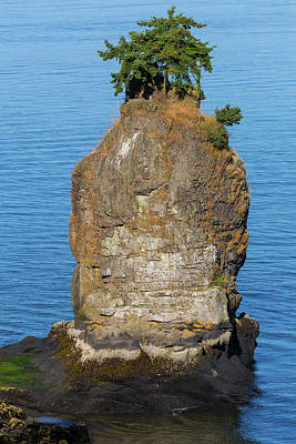 Photograph - Siwash Rock By Stanley Park by David Gn