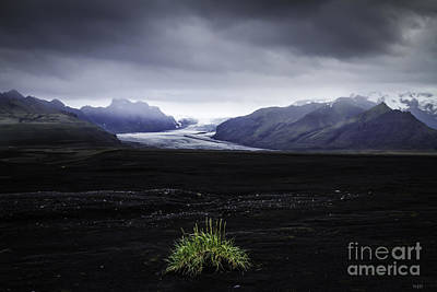 Photograph - Skaftafellsjokull Glacier by Nancy Dempsey