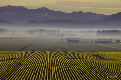 Skagit Digital Art - Skagit Valley Sunrise by Arthur Kuntz