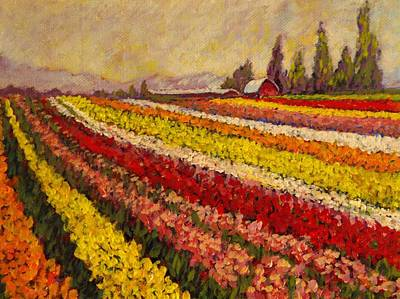 Skagit Valley Tulip Field Art Print by Charles Munn