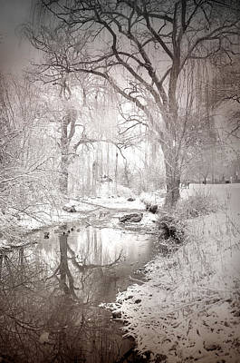 Photograph - Skaha Park In Winter by Tara Turner