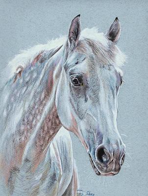 Dappled Light Drawing - Skay by Kateryna Bielikova