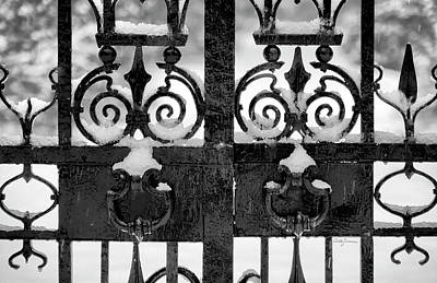 Photograph - Skeletal Twins In Winter - Gates by Betty Denise
