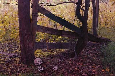 Photograph - Skeleton Fence by Buddy Scott