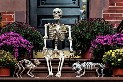 Photograph - Skeleton Halloween Decorations by Robert Ullmann
