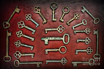 Hobbies And Collections - Art And Photograph - Skeleton Key Gothic Collection  by Paul Ward