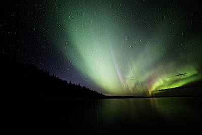 Photograph - Skeleton Lake Aurora by Darcy Michaelchuk