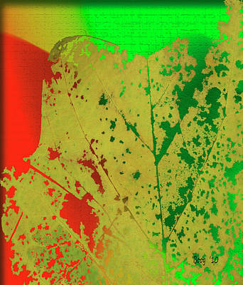 Art Print featuring the photograph Skeleton Leaf by Larry Bishop