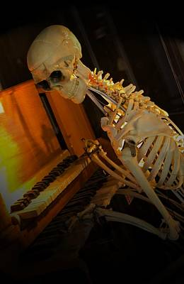 Photograph - Skeleton Musician by Bob Pardue
