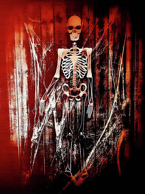 Human Skeleton Photograph - Skeleton by Tom Gowanlock