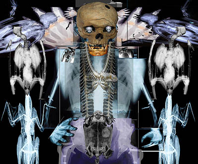 Digital Art - Skeletonism by Doug Duffey