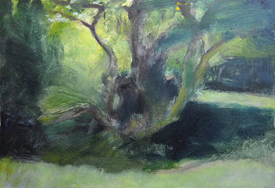 Sketch Of A Shady Glade. Art Print by Harry Robertson