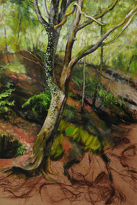Mountains Painting - Sketch Of A Treetrunk by Harry Robertson