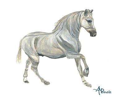 White Horse Watercolor Painting - Sketch Of Andalusian Horse by Angeles M Pomata