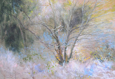 Painting - Sketch Of Halation Effect Through Trees by Harry Robertson