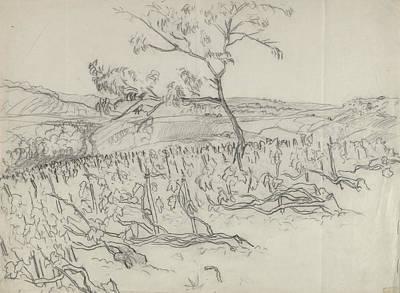 Sketch Of Vineyard Art Print