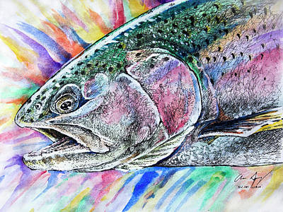 Drawing - Sketch - Rainbow Trout Color by Aaron Spong