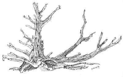 Drawing - Sketchbook 057 by David King