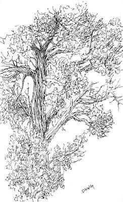 Drawing - Sketchbook 058 by David King