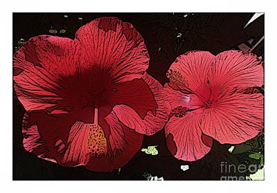 Photograph - Sketchy Hibiscus by Barbara Griffin