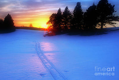 Photograph - Ski Tracks by Scott Kemper