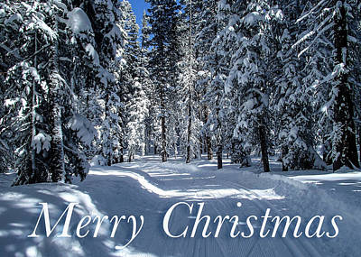 Photograph - Ski Trail Christmas Card by Roy Kastning
