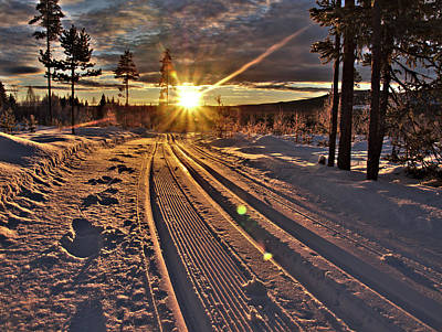 Ski Trails With Sun Beams Art Print