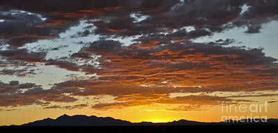 Photograph - Skies Of Gold by Gina Savage