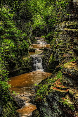 Photograph - Skillet Creek Through Pewits Nest by Dale Kauzlaric