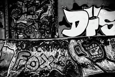 Photograph - Skip by Jez C Self