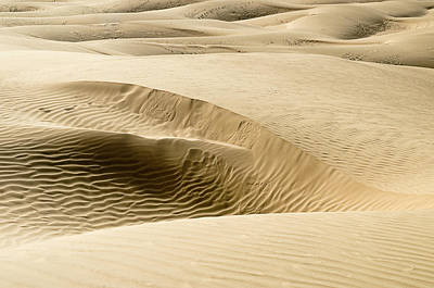 Photograph - Skn 1410 The Dune Design by Sunil Kapadia