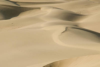 Photograph - Skn 1436 Nature's Sand Playground by Sunil Kapadia