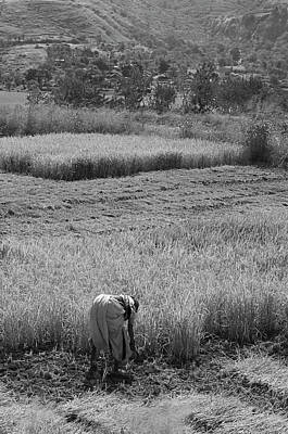 Photograph - Skn 2621 Bending The Back Bw by Sunil Kapadia