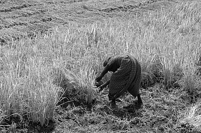 Photograph - Skn 2625 Some Left B/w by Sunil Kapadia