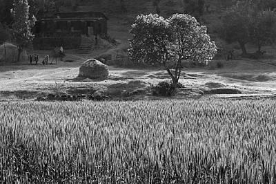 Photograph - Skn 6459 Village Scenario B/w by Sunil Kapadia