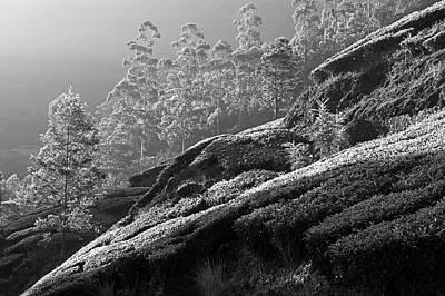 Photograph - Skn 6697 Romance Of Light. B/w by Sunil Kapadia
