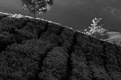 Photograph - Skn 6758 Light Line. B/w by Sunil Kapadia