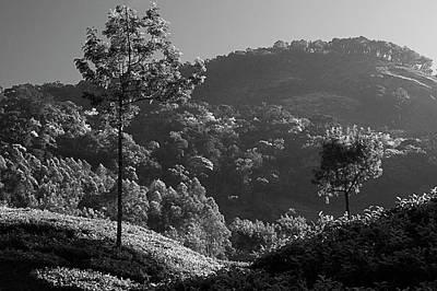 Photograph - Skn 6765 Grandeur Of Munnar. B/w by Sunil Kapadia