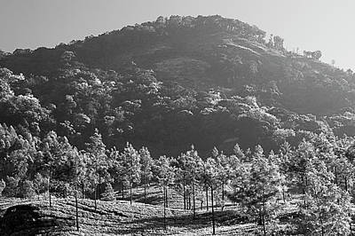 Landscapes Royalty-Free and Rights-Managed Images - SKN 6775 Majestic Munnar. B/W by Sunil Kapadia