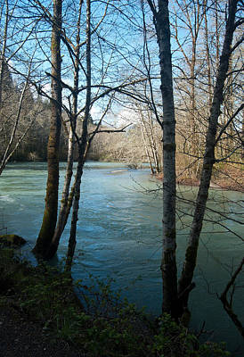 Photograph - Skokomish River - Around The Bend 4 by Jani Freimann