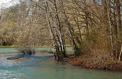 Photograph - Skokomish River - Around The Bend by Jani Freimann
