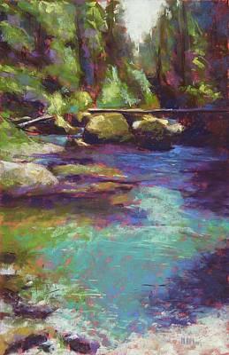Skokomish River Art Print by Mary McInnis