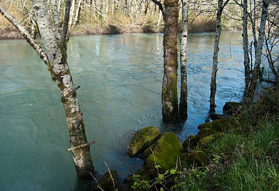 Photograph - Skokomish River - Swollen River 2 by Jani Freimann