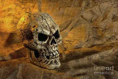 Photograph - Skull And Sackcloth by Steve Purnell