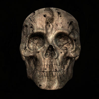 Digital Art - Skull Art 2 by Sumit Mehndiratta